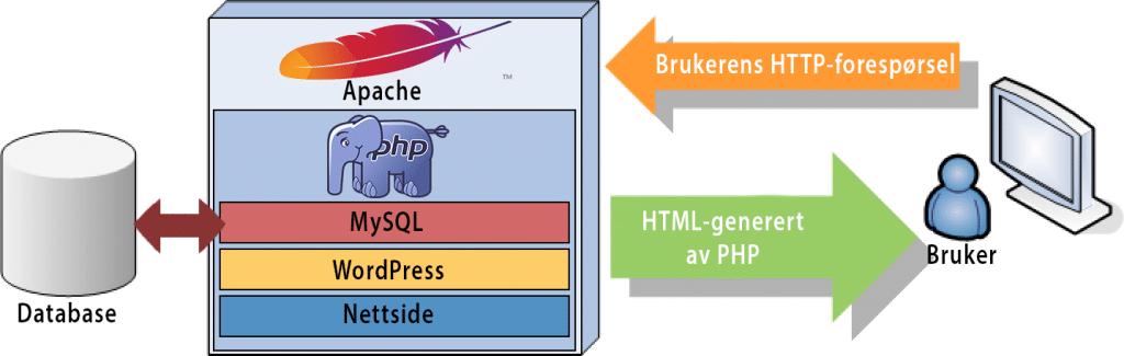 Visualisering av et PHP-oppsett med database og WordPress