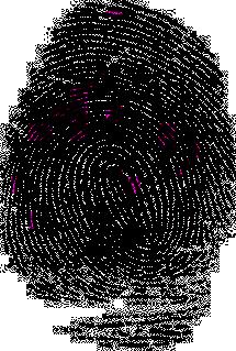 Bilde av fingeravtrykk